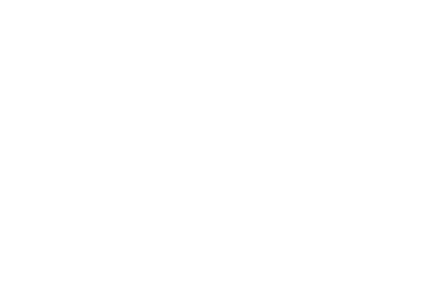 Australian Government RISE Fund